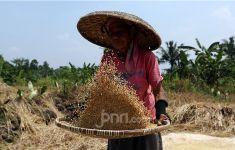 Indonesia Raih Penghargaan dari FAO dan IAEA, Ini Prestasinya - JPNN.com