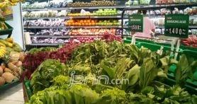 Ini 5 Kiat Supaya Anak mau Makan Sayuran - JPNN.com