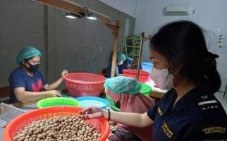 Bea Cukai Dorong UMKM Daerah Agar Produknya Tembus Pasar Global - JPNN.com
