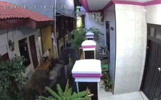 ART Dijambak dan Dijedotkan ke Tembok, Videonya Viral, Polisi Turun Tangan - JPNN.com