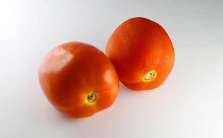 4 Manfaat Masker Tomat, Kulit Wajah Makin Berseri - JPNN.com