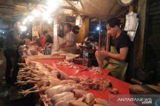 Pasca-Iduladha: Harga Daging Ayam Ras Anjlok, Cabai Terjun Bebas - JPNN.com Jatim