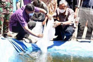 Karena Lahan di Kediri Sempit, Pemkot Bagikan Benih Ikan Koi untuk Diternak - JPNN.com Jatim