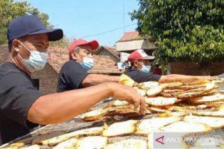 Pupuk Bersubsidi Ringankan Biaya Petani Porang di Jombang - JPNN.com Jatim