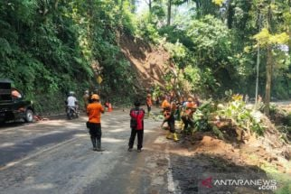 Pohon Tumbang, Jalur Gumitir Diberlakukan Sistem Buka-Tutup, Hati-Hati! - JPNN.com Jatim