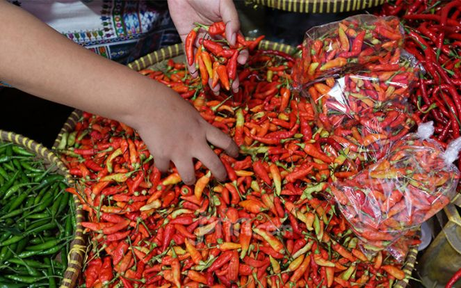 Harga Cabai, Bawang, hingga Minyak Goreng Hari Ini, Berikut Daftarnya - JPNN.com